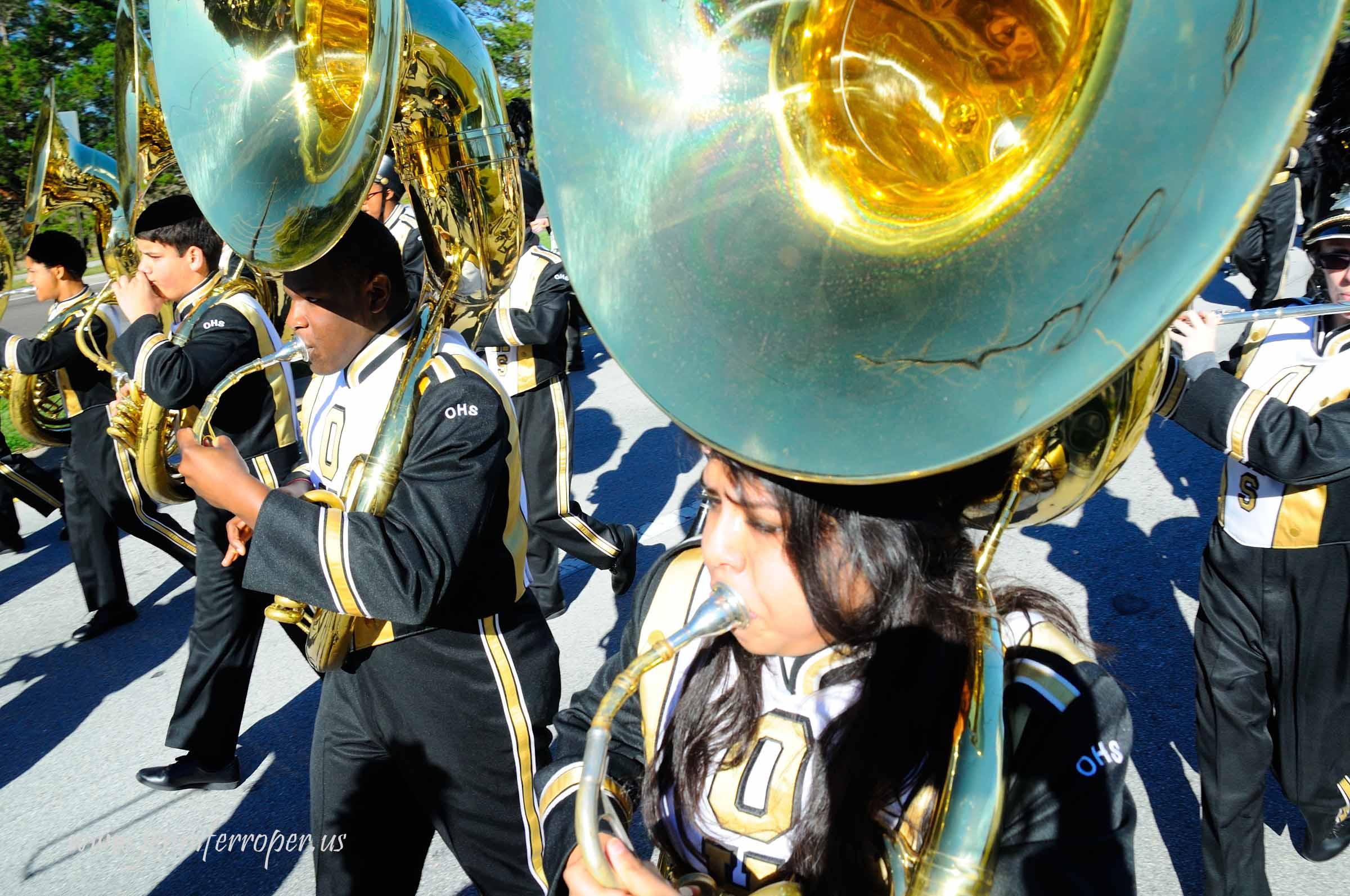 2015 Martin Luther King Parade and Celebration